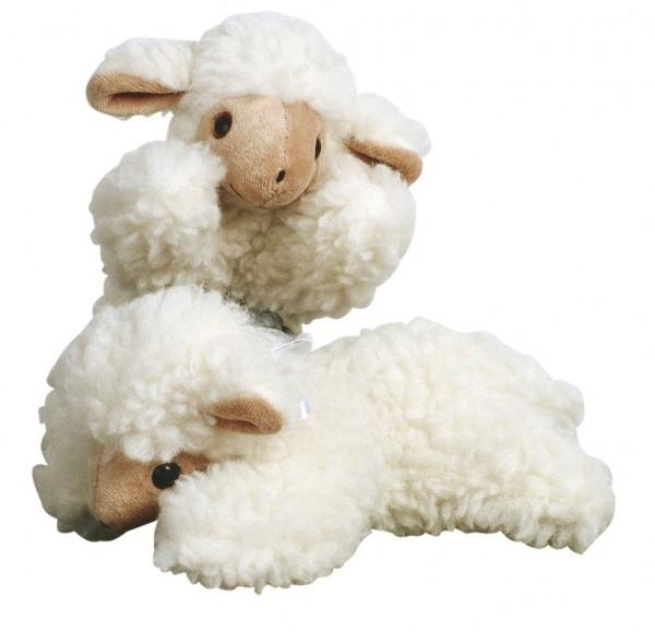 Schmusetier Lamm